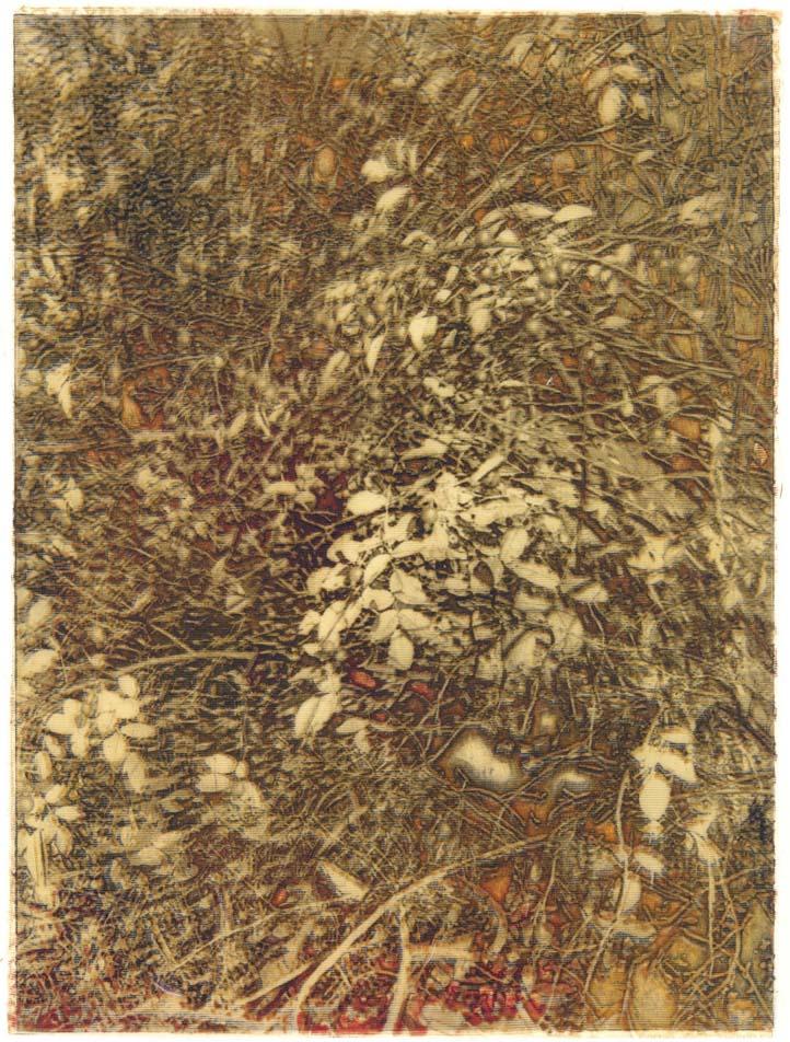 rohini-devasher-copyright-foliage-2004(3)