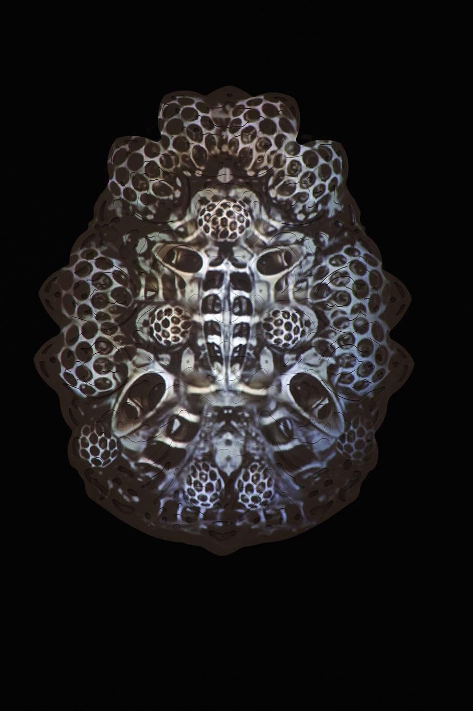 rohini-devasher-copyright-fossus-2011(10)