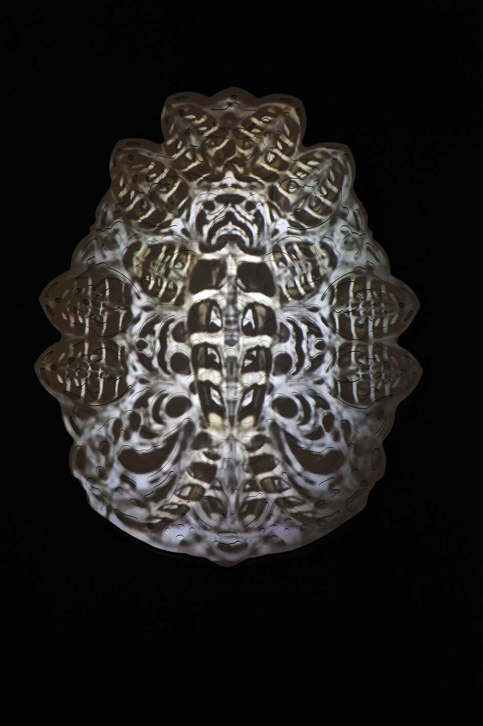 rohini-devasher-copyright-fossus-2011(5)