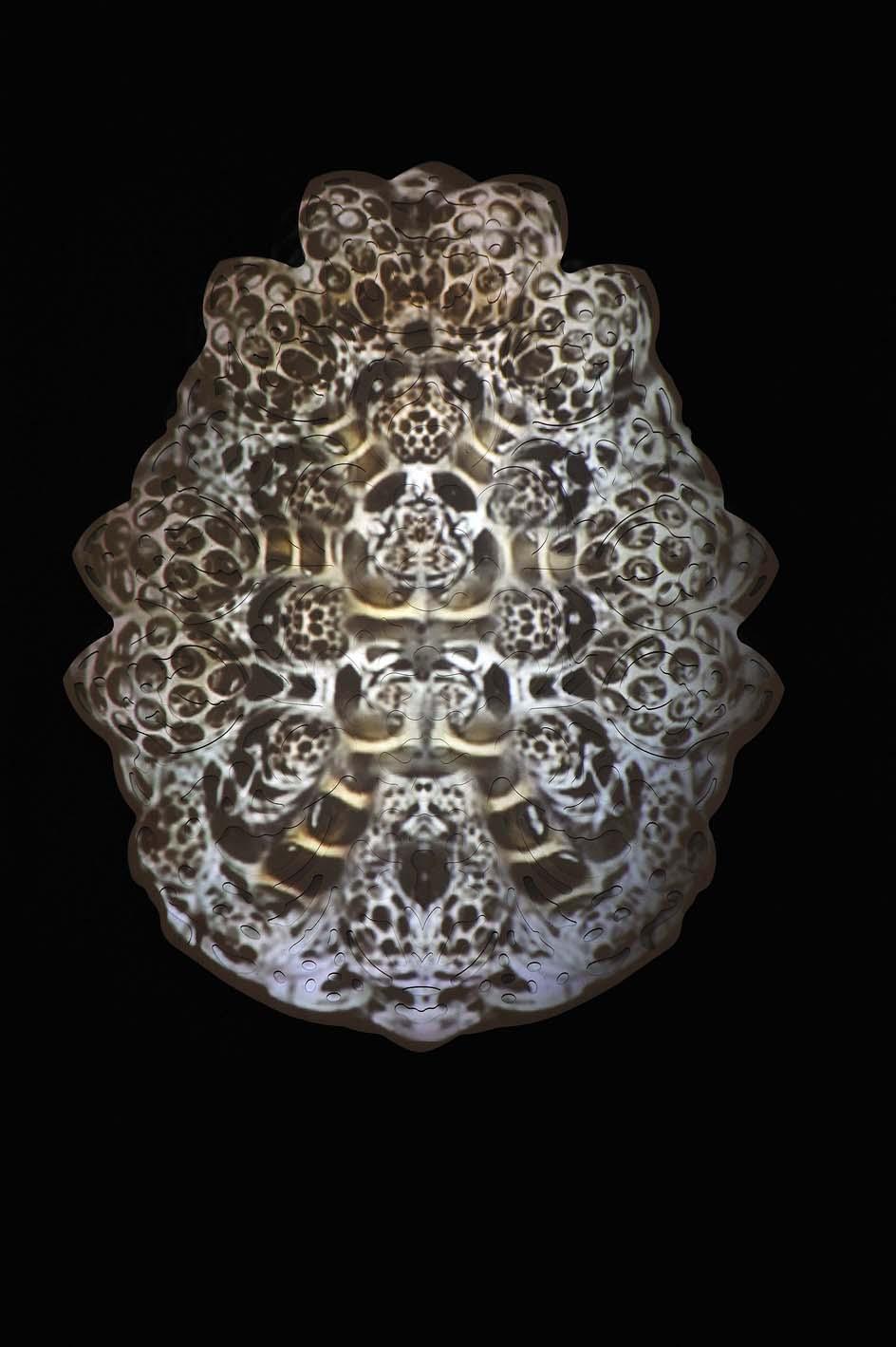 rohini-devasher-copyright-fossus-2011(7)