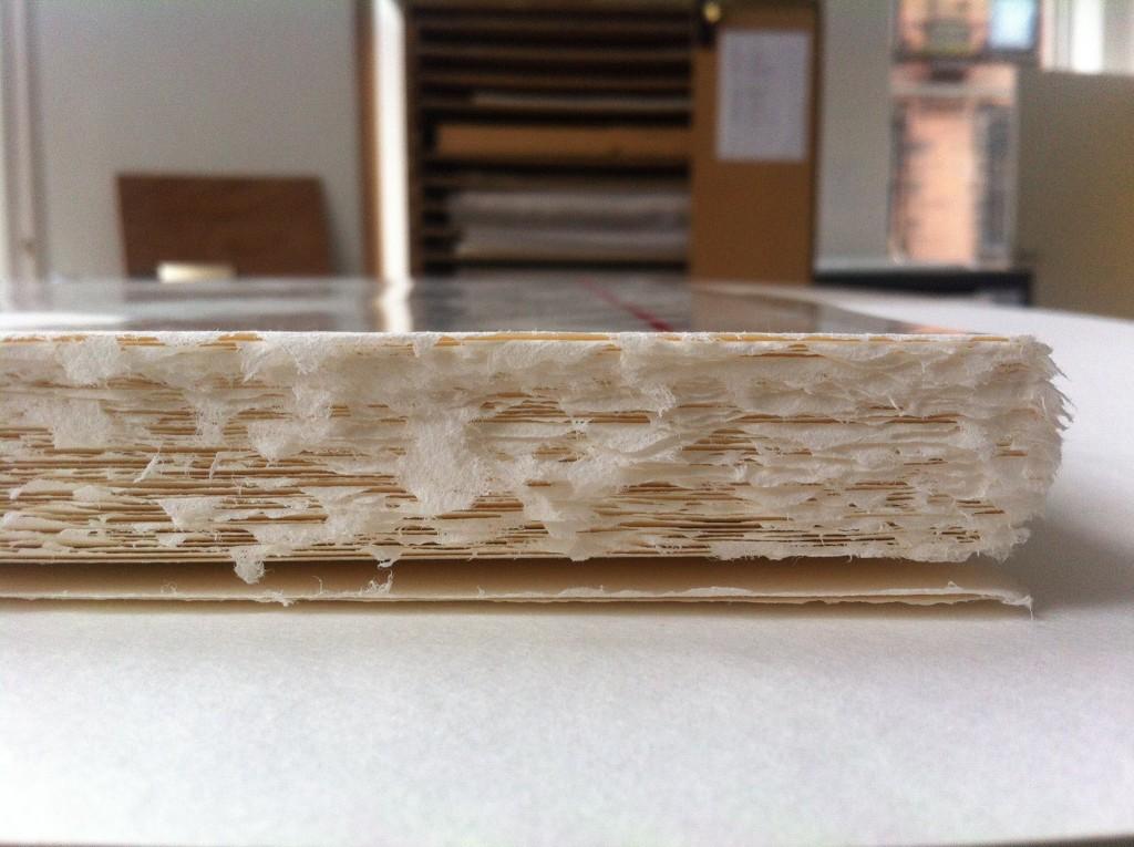 rohini-devasher-copyright-below-another-sky-residency-glasgow-print-studio-2014 (2)