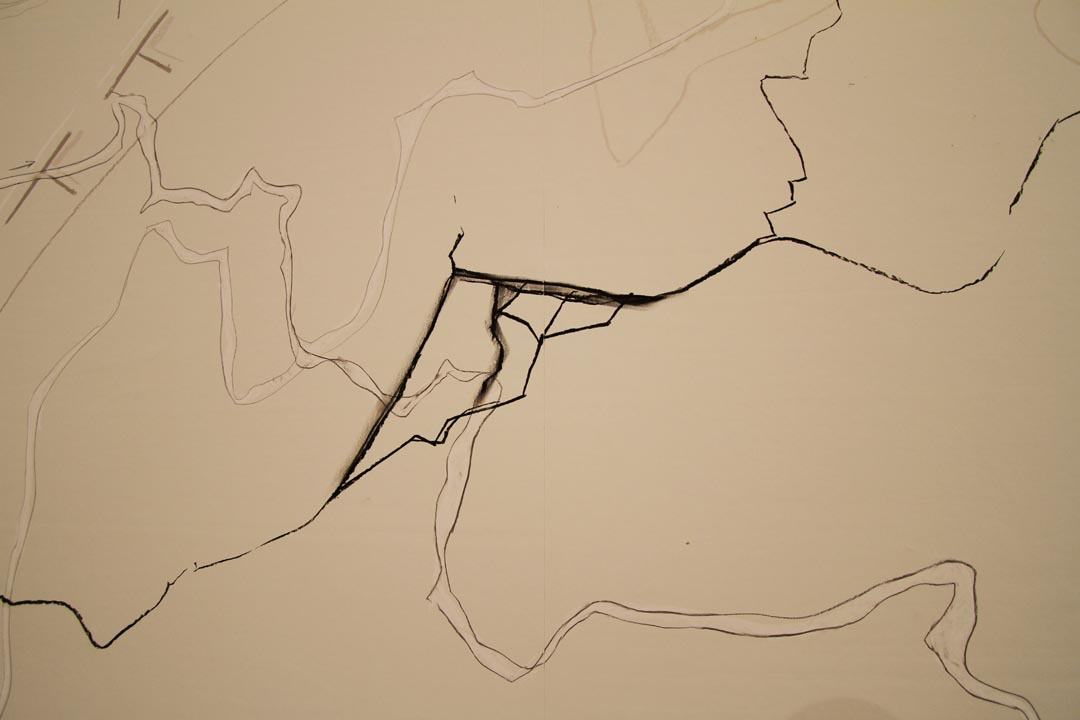 rohini-devasher-copyright-north-is-up-wall-drawing-2014(12)