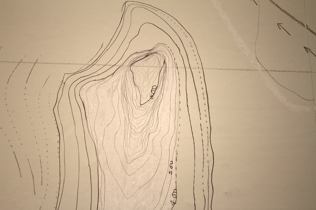 rohini-devasher-copyright-north-is-up-wall-drawing-2014(2)
