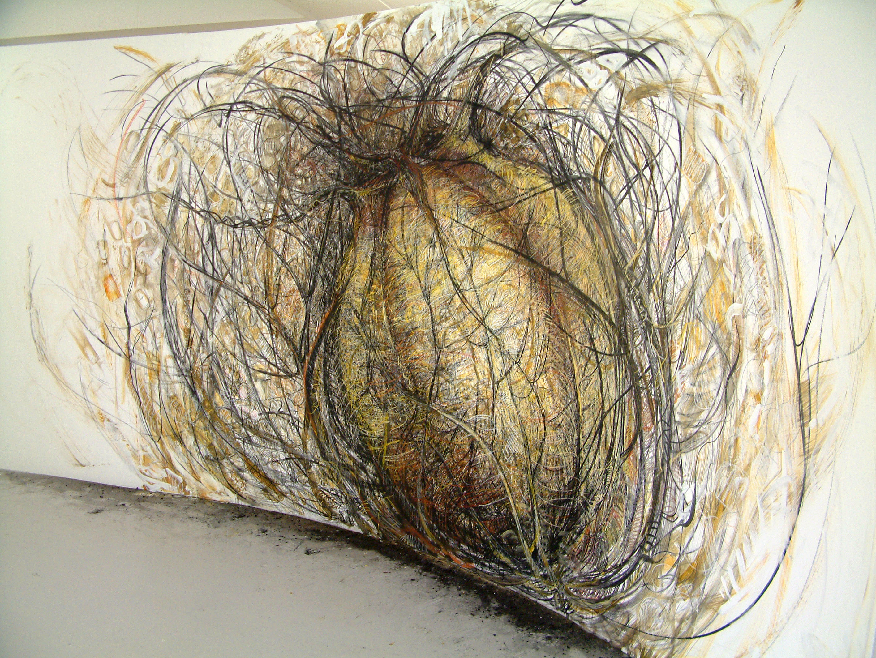 rohini-devasher-copyright-seed-wall-drawing-2004 (2)