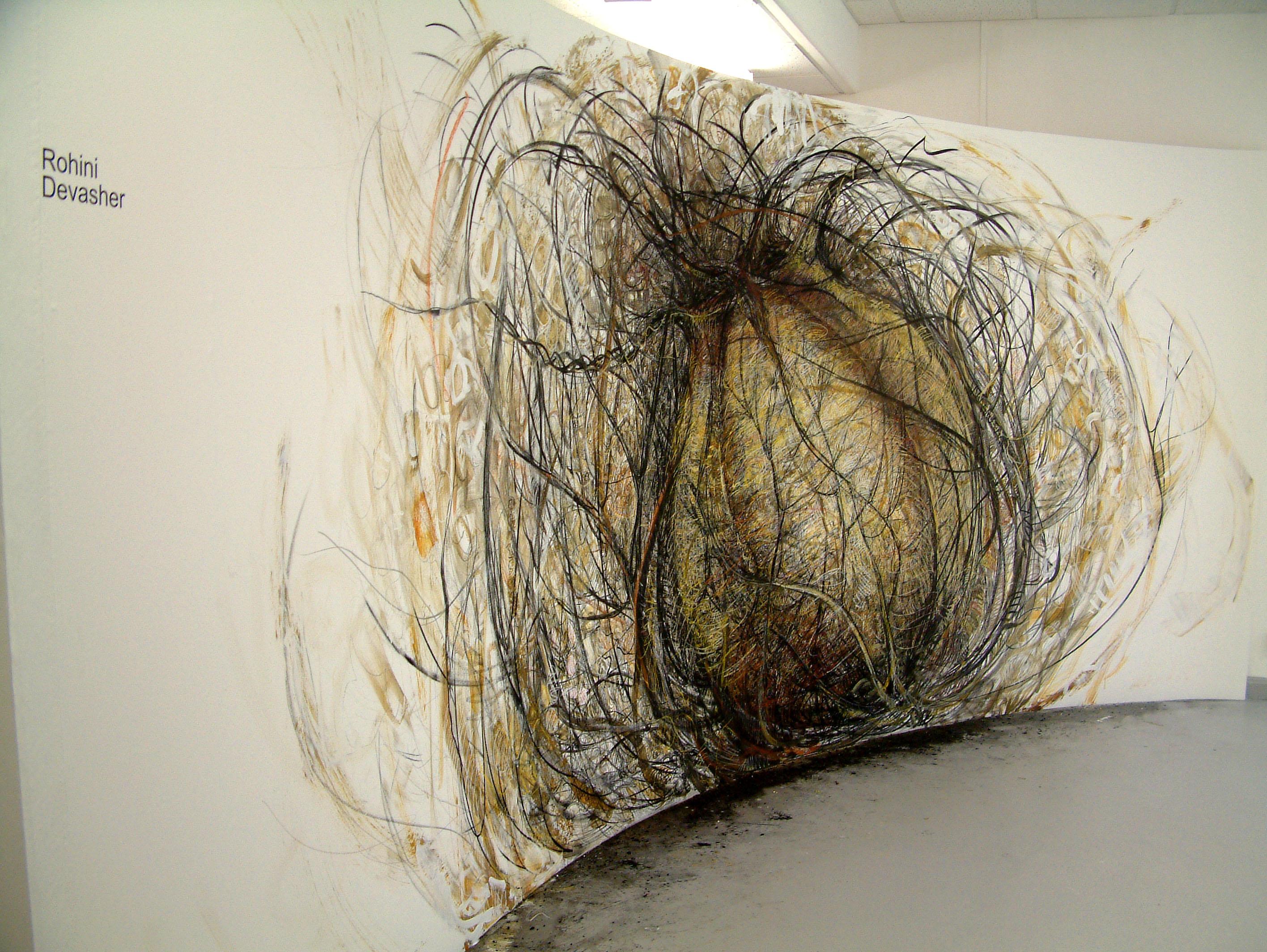 rohini-devasher-copyright-seed-wall-drawing-2004 (3)