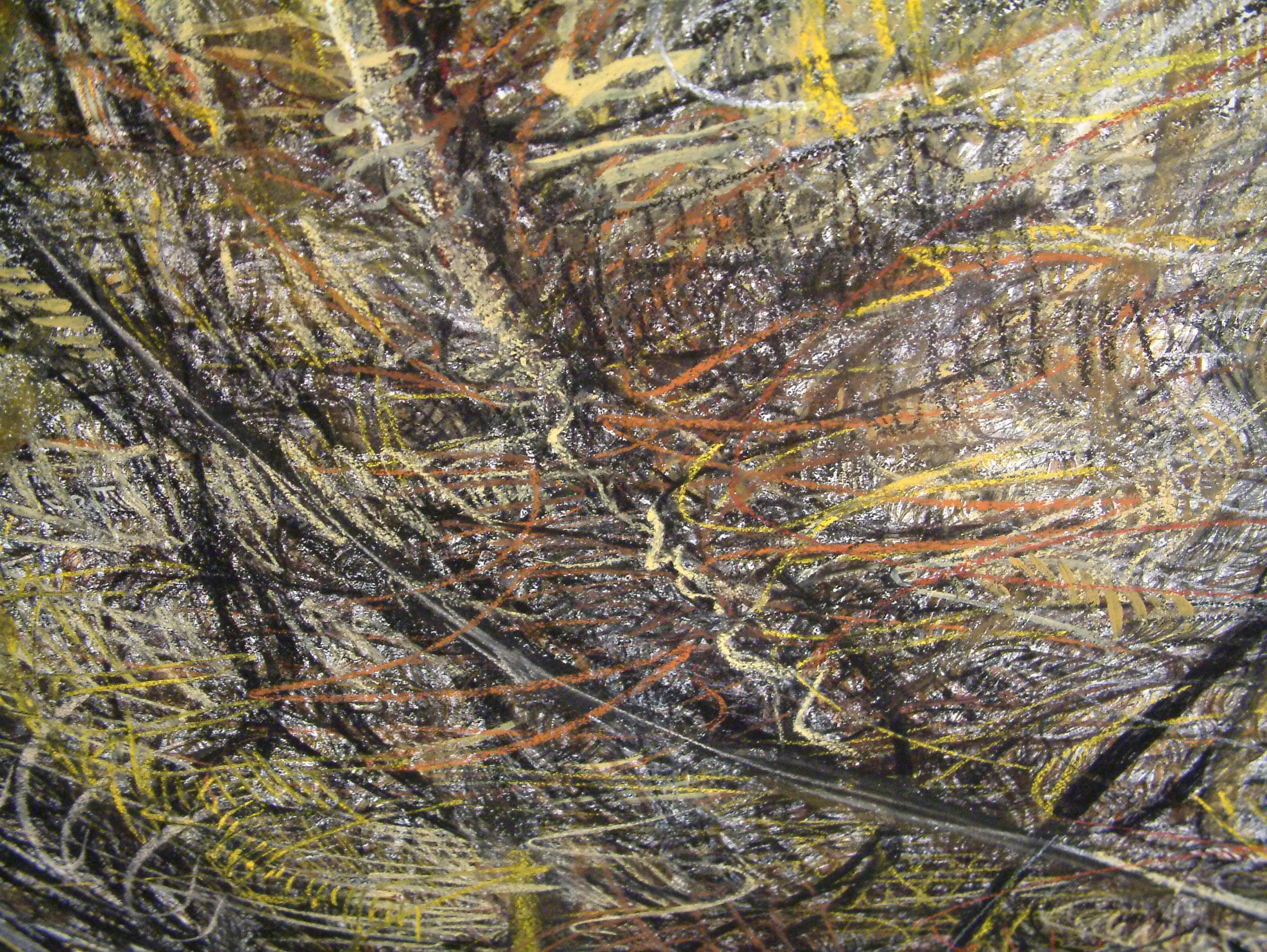 rohini-devasher-copyright-seed-wall-drawing-2004 (4)