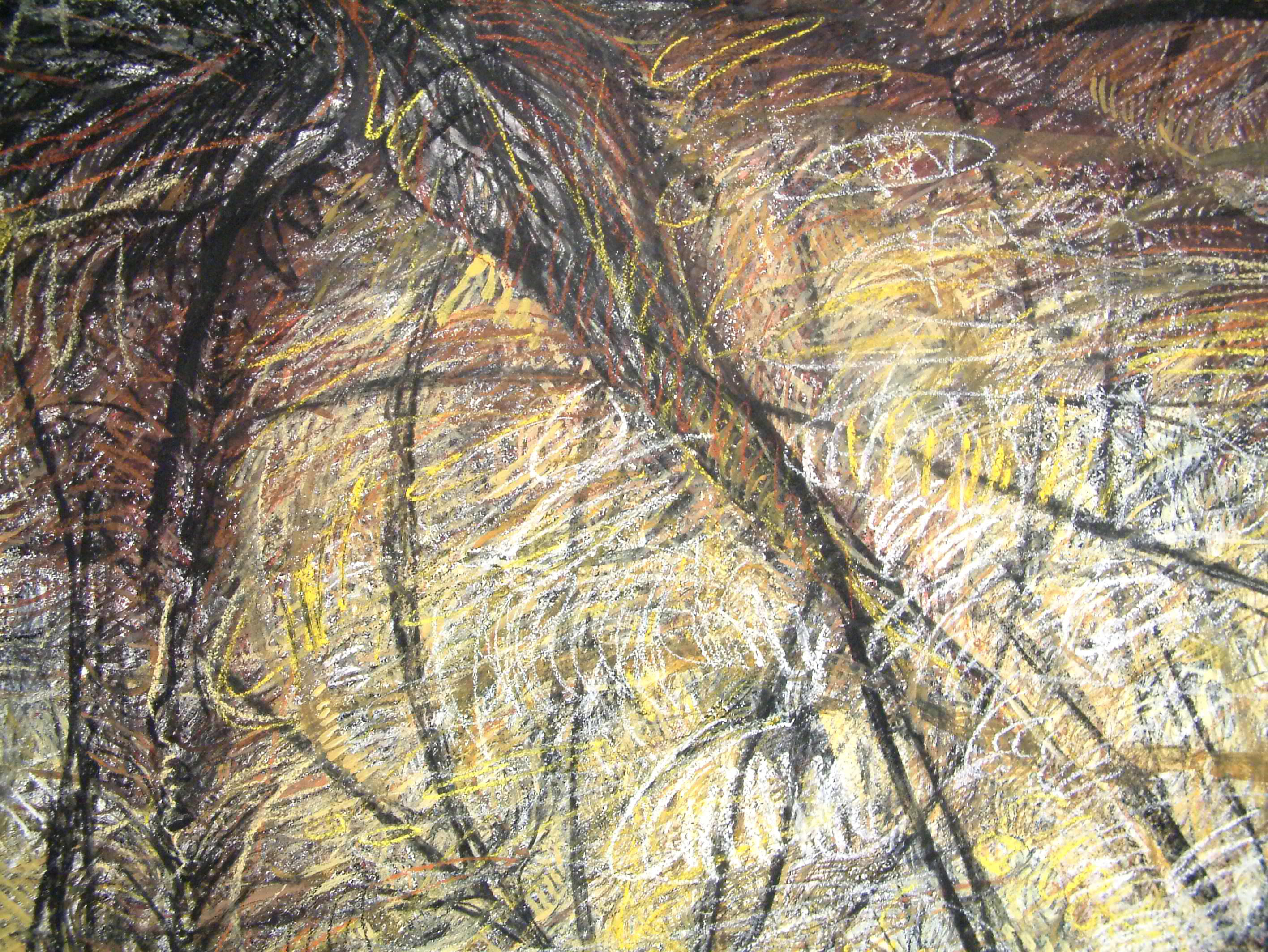 rohini-devasher-copyright-seed-wall-drawing-2004 (5)