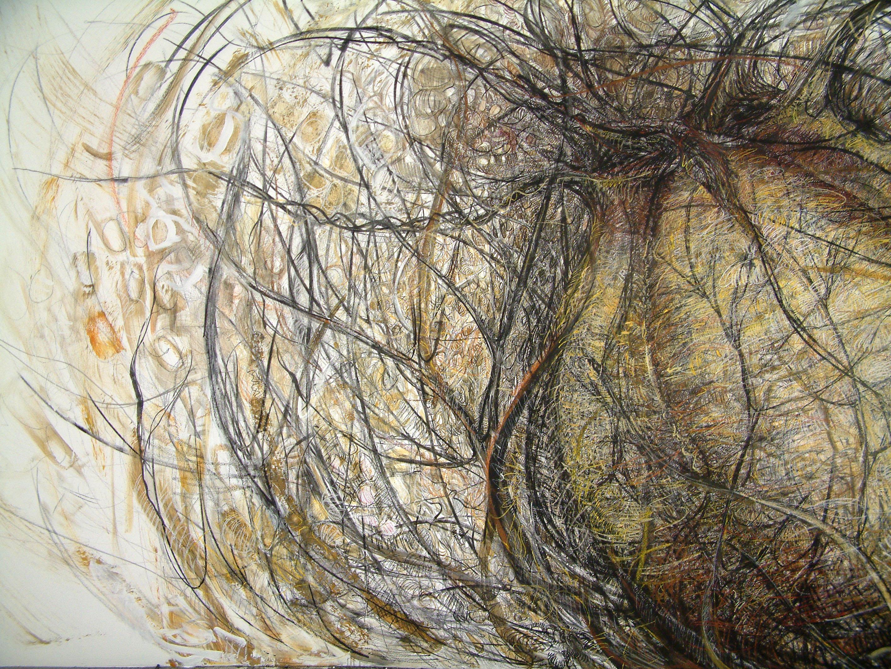 rohini-devasher-copyright-seed-wall-drawing-2004 (6)