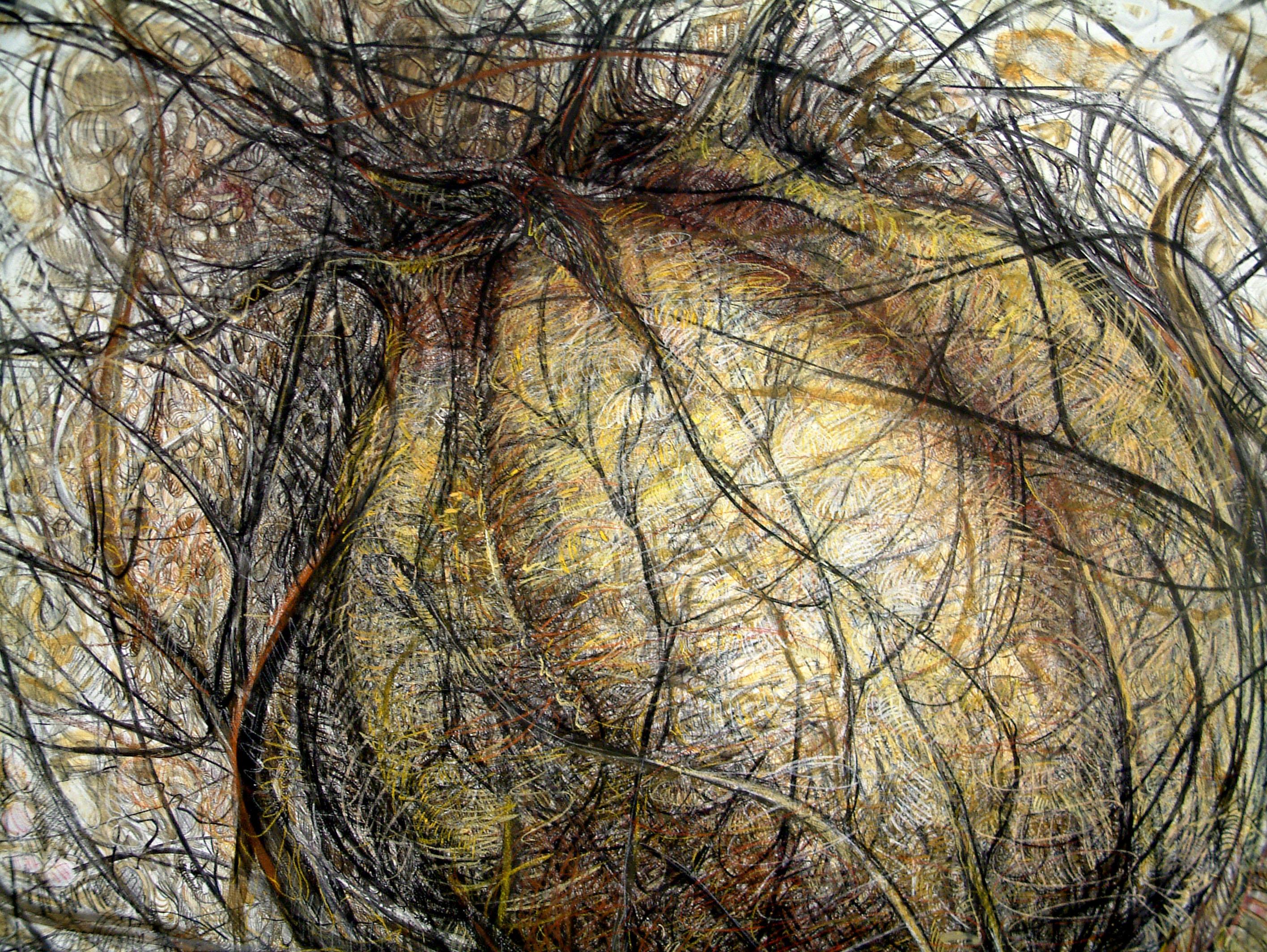 rohini-devasher-copyright-seed-wall-drawing-2004 (7)