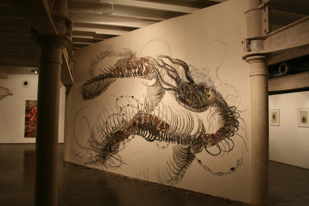 Untitled - wall drawing Project 88 - rohini devasher - 2009 (8)
