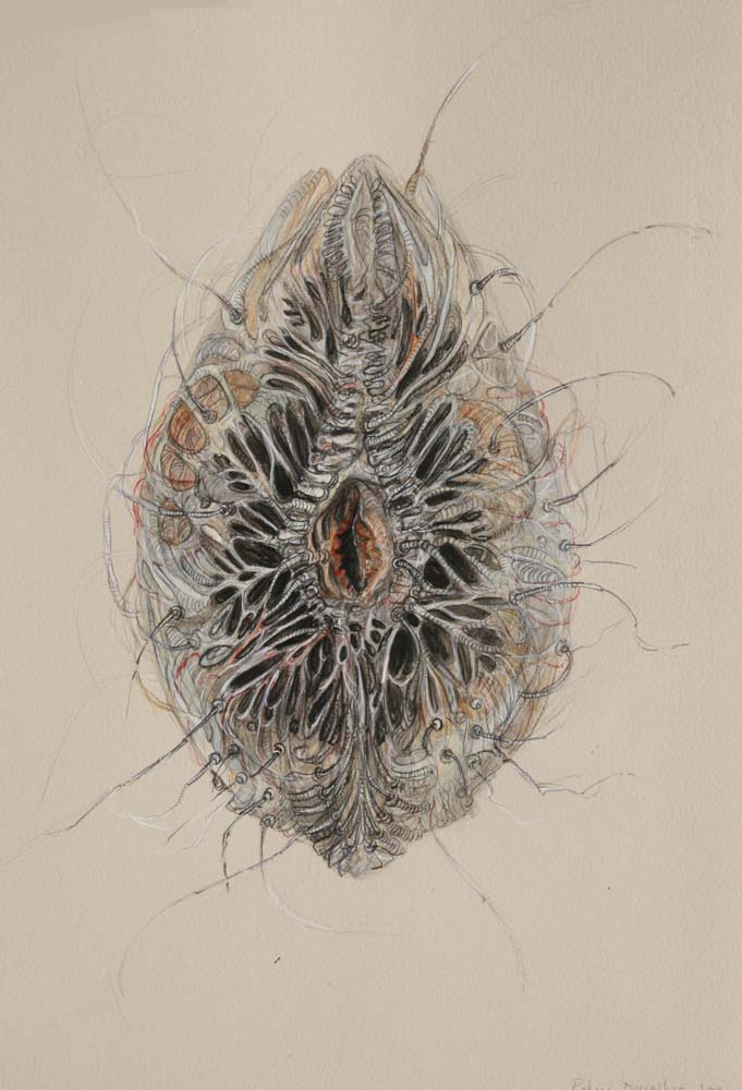rohini-devasher-copyright-breed-drawings-2009 (5)