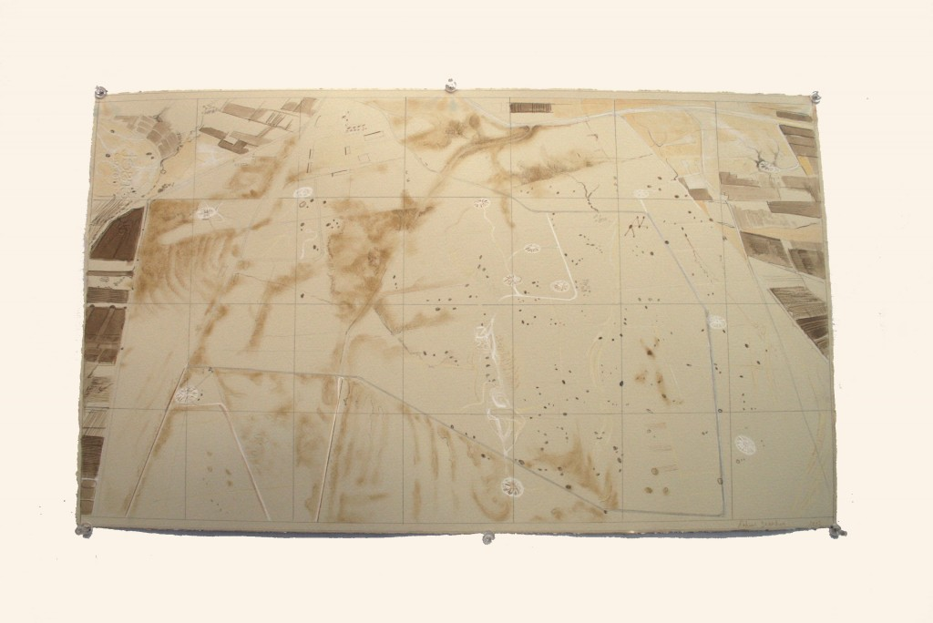 rohini-devasher-copyright-surface-tracking-2013 (10)