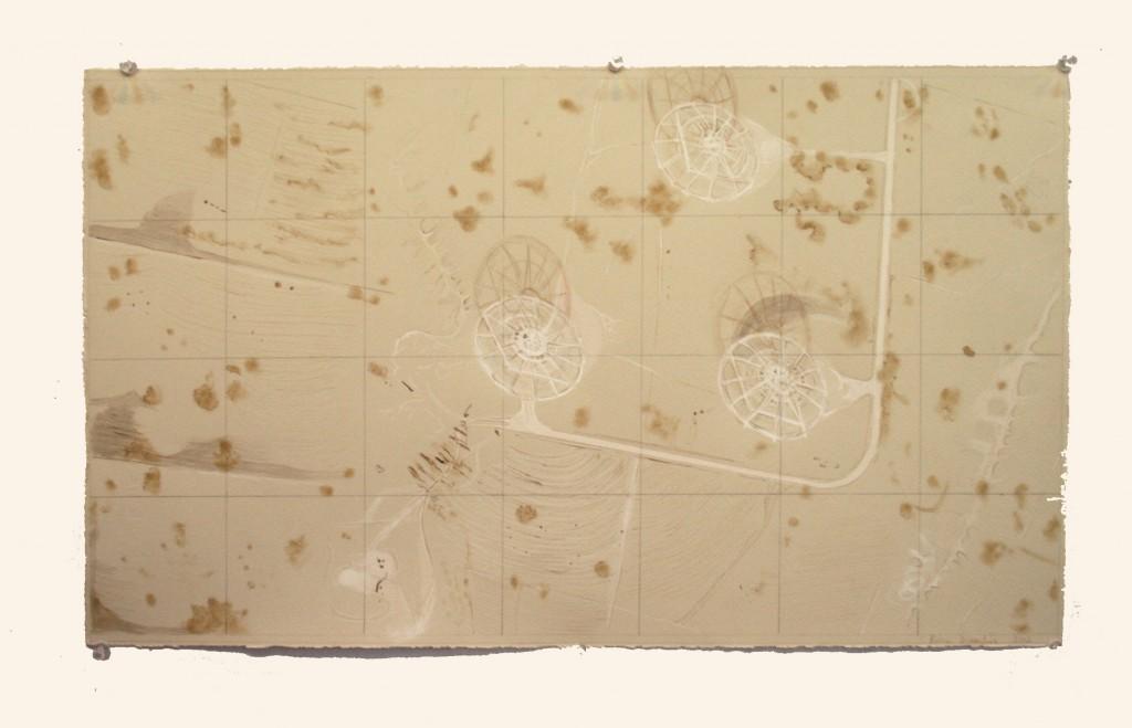 rohini-devasher-copyright-surface-tracking-2013 (2)