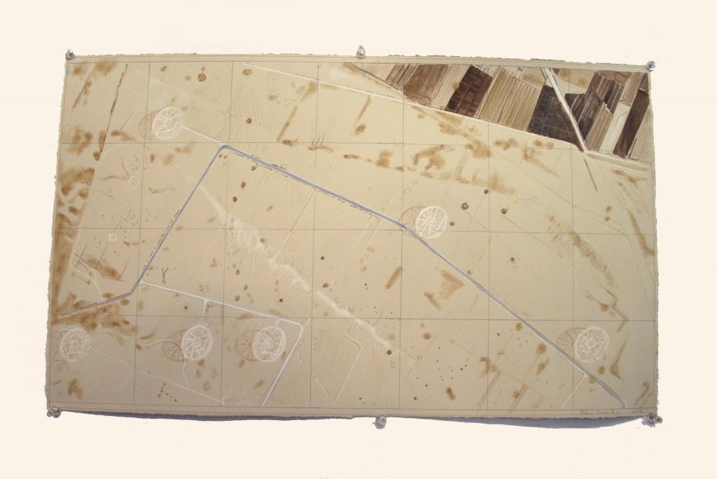 rohini-devasher-copyright-surface-tracking-2013 (9)