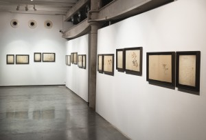 Atlas Phaenogamia or the Atlas of Mimetic Flowering Plants | installation view | image credit Anil Rane, courtesy Project 88, Mumbai