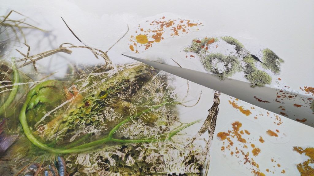 Genetic Drift: Symbiont II, installation view at the Museo de Arte Moderno de Barcelona